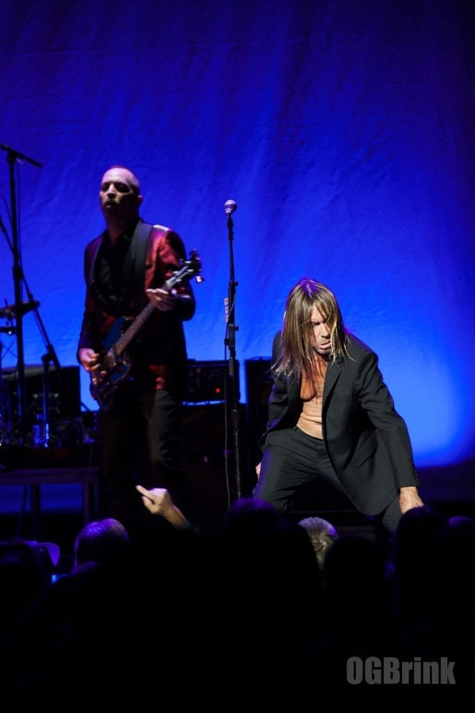 iggy pop, suit no shirt, on stage